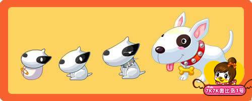 黑白花狗 努比犬