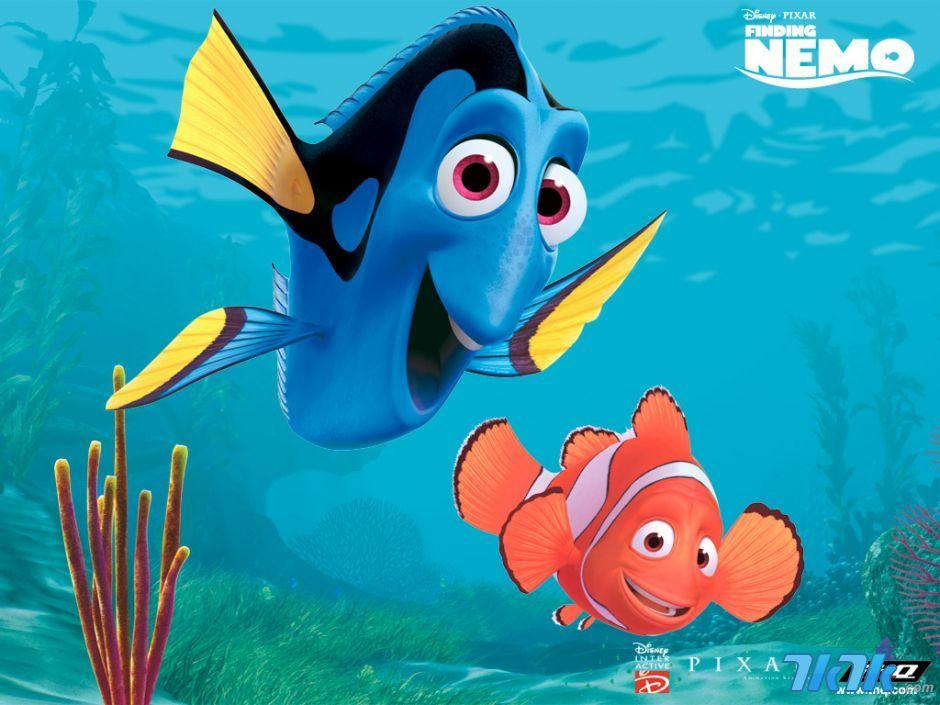 Finding Nemo D Animasi Hd Wallpaper: 海底总动员壁纸