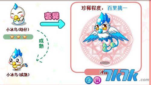 7k7k 奥比岛 变异动物大全    星级 小冰鸟是三星动物,冰晶鸟是百里挑