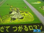 这门艺术早在上世纪90年代就已经在日本青森县问世,起初只是为了追寻一种能振兴农业的途径。后来随着旅游业的发展,这种艺术开始逐渐在日本各县蔓延开来,开头的火影忍者稻田就位于日本本州冈山县。