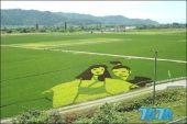 """""""稻田艺术""""这是一种非常适合推广观光农业的方法。"""