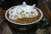 日本3D咖啡绘出超萌龙猫