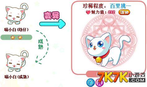 奥比岛喵星小白猫怎么得?