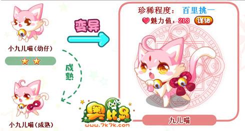 作用 跟随 简介 九儿的萌猫形态,是不是很萌呢?快领养一只吧!