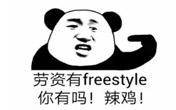 你有freestyle吗?
