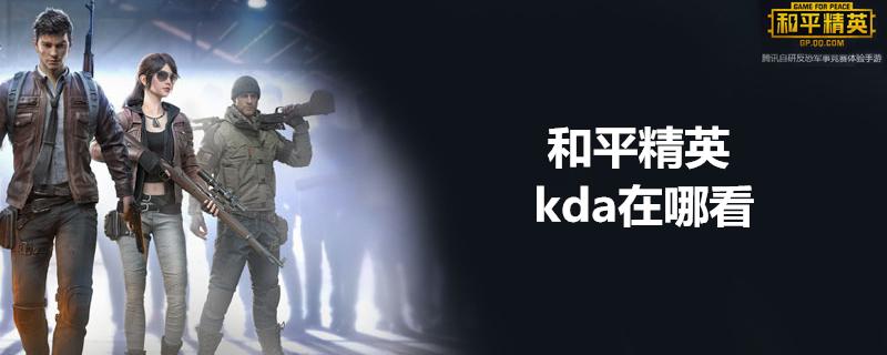 和平精英kda在哪看
