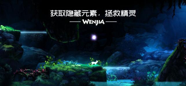 WenJia文嘉