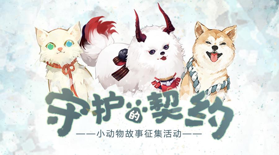 《阴阳师》玩家关爱流浪动物